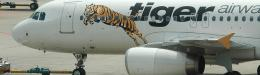 Tiger Airways turns around loss to $12.7m quarter profit