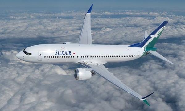 Singapore suspends Boeing 737 Max flights   Singapore