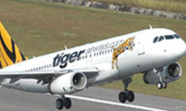 analysis of tiger airways internal and