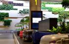 Daily Briefing: Changi Airport tops airport rankings for 6th year; Facebook and Google slam Singapore\'s fake news law