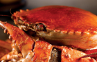 Seafood restaurant No Signboard seeking $130m in upcoming IPO